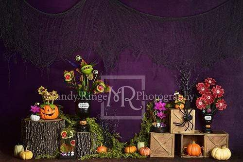 Kate Spooky Garden Halloween Backdrop Designed By Mandy Ringe Photography