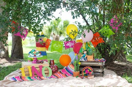 Kate First Birthday Backdrop Camp Picnic Designed by Tyna Renner