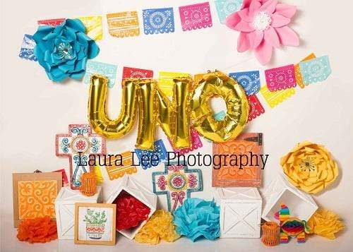 Kate Uno Fiesto Party Decorations Children Backdrop for Photography Designed by  Laura Lee Photography