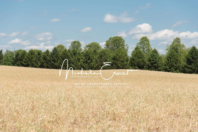 Kate Autumn Wheat Field Fun Backdrop for Photography Designed By Michele Ernst Photography
