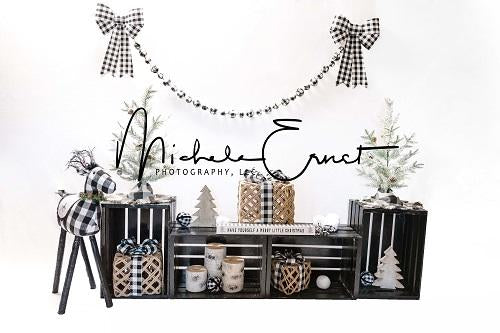 Kate Christmas Black and White Grid Backdrop Designed By Michele Ernst Photography