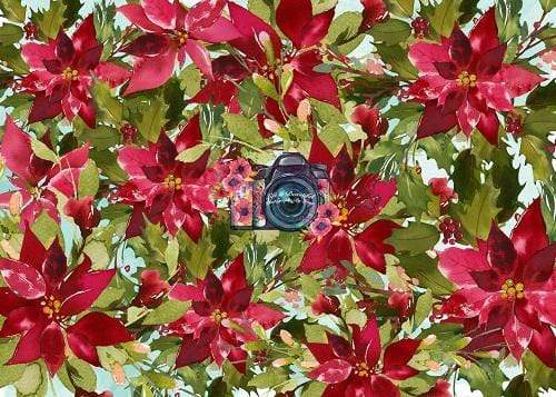 Kate Red Poinsettias Floral Backdrop for Photography Designed By Leann West