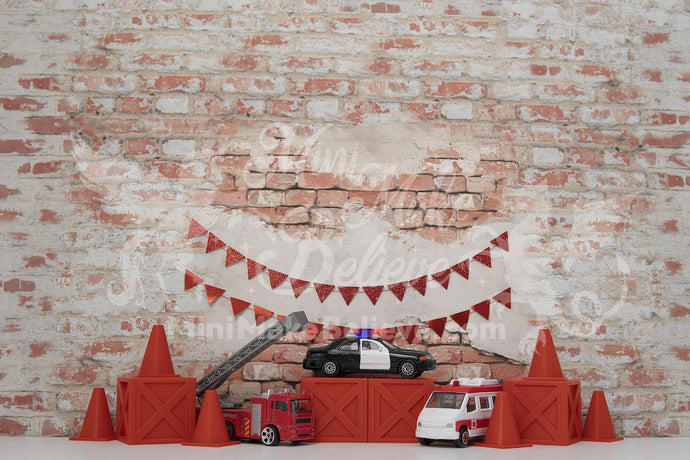 Kate Birthday Rescue Cars Boy Backdrop Designed by Mini MakeBelieve