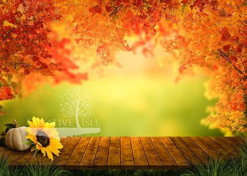 Kate Sunny Autumn Backdrop Designed by Chrissie Green