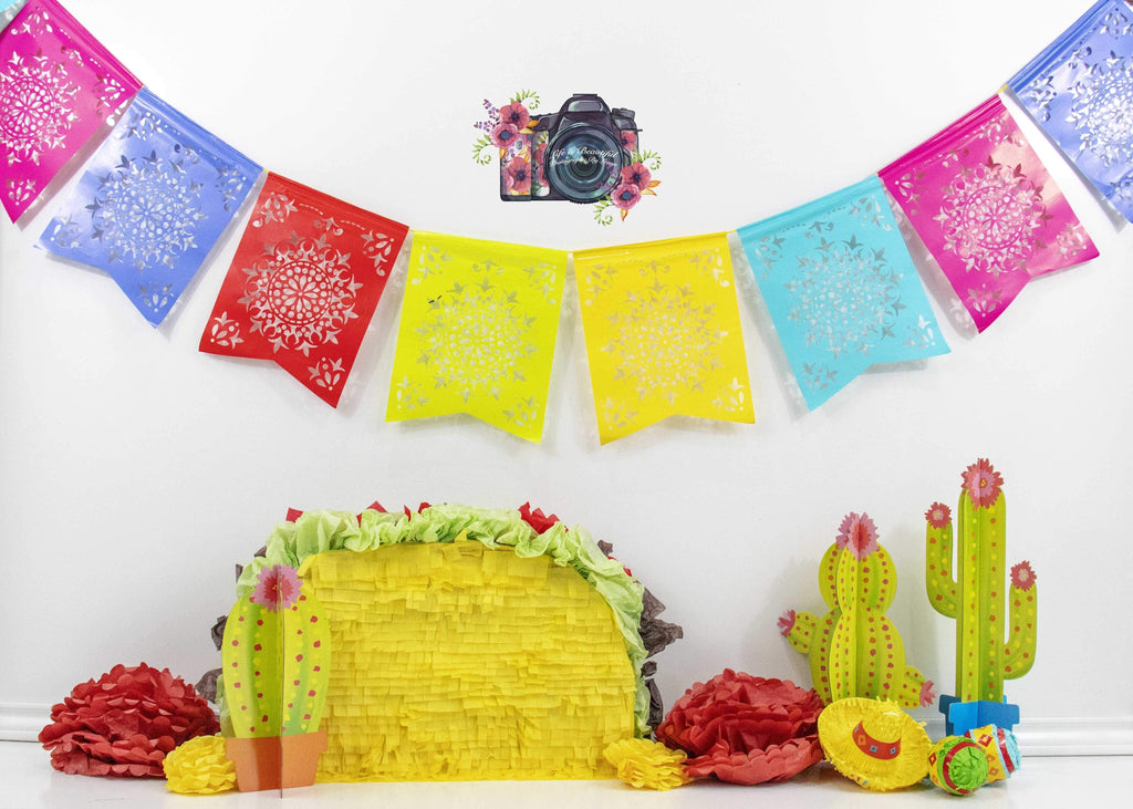 Kate Taco Theme with Colorful Flags Backdrop for Photography Designed By Leann West