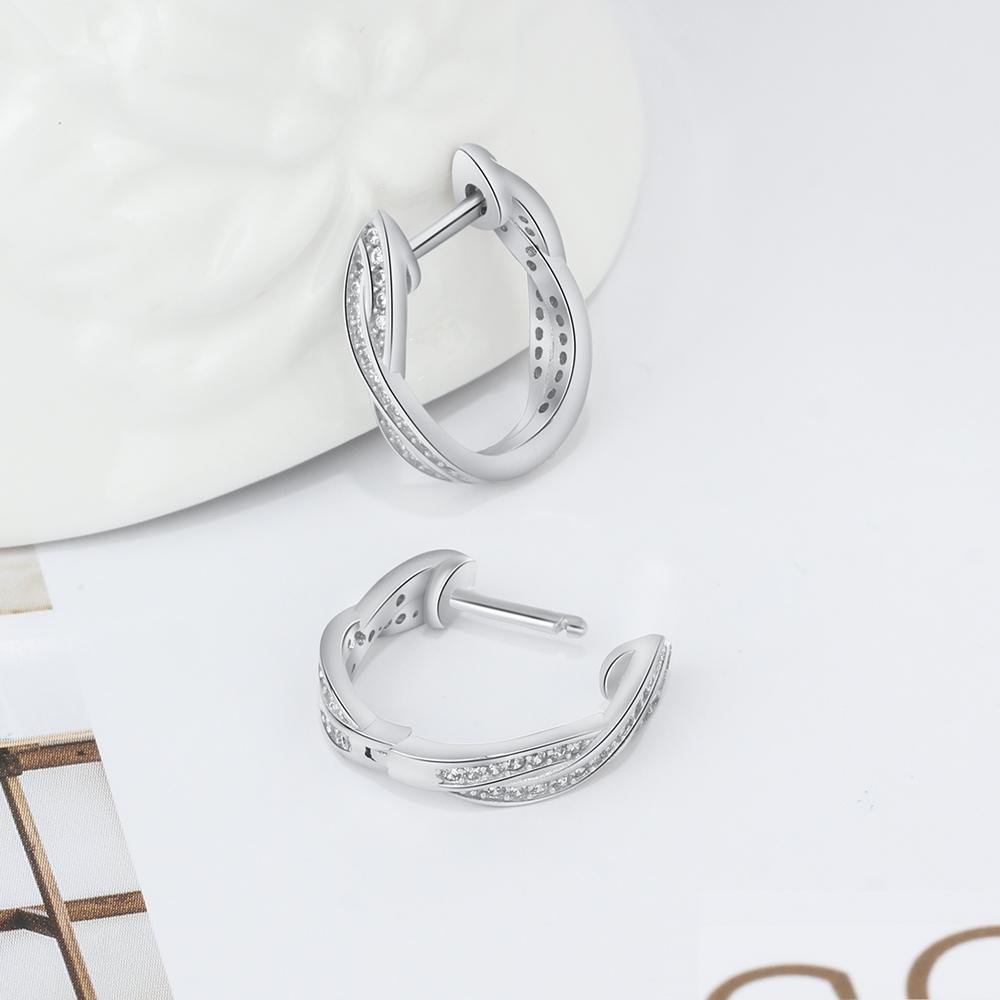 Real 925 Sterling Silver Hoop Earrings for Women Trendy Zebra