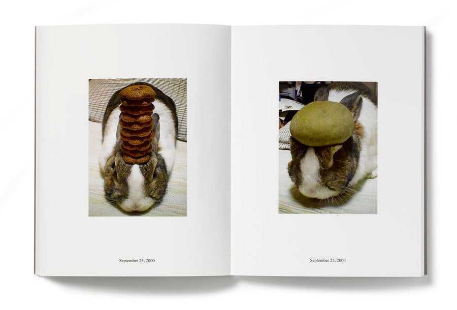 IN ALMOST EVERY PICTURE #8 (Oolong- conejo) | Erik Kessels and Hironori Akutagawa.