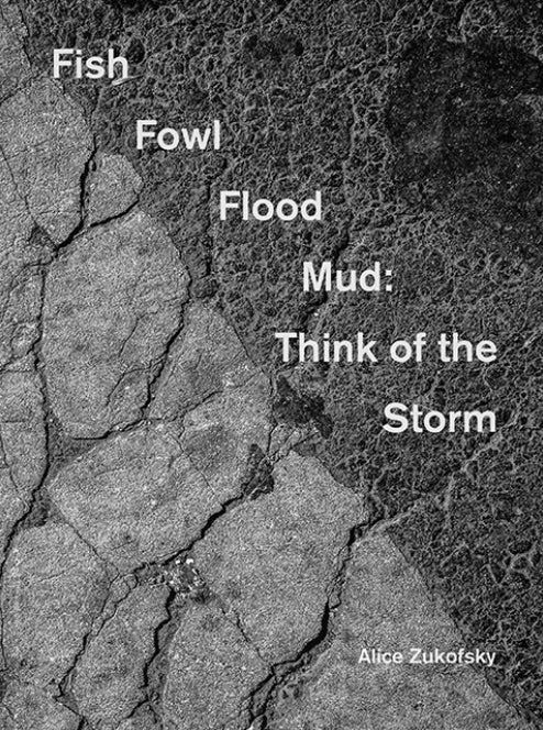 Fish Fowl Flood Mud: Think of the Storm | Alice Zukofsky