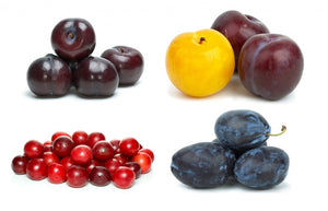 Plums - Multiples varieties