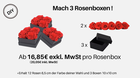 Set DIY 3er Rosenboxen