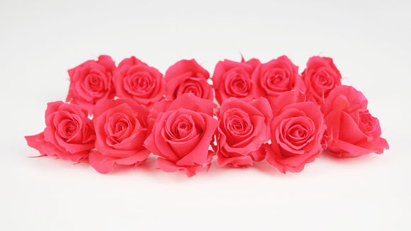 Stabilised roses 4 cm - 12 rose heads - Pink