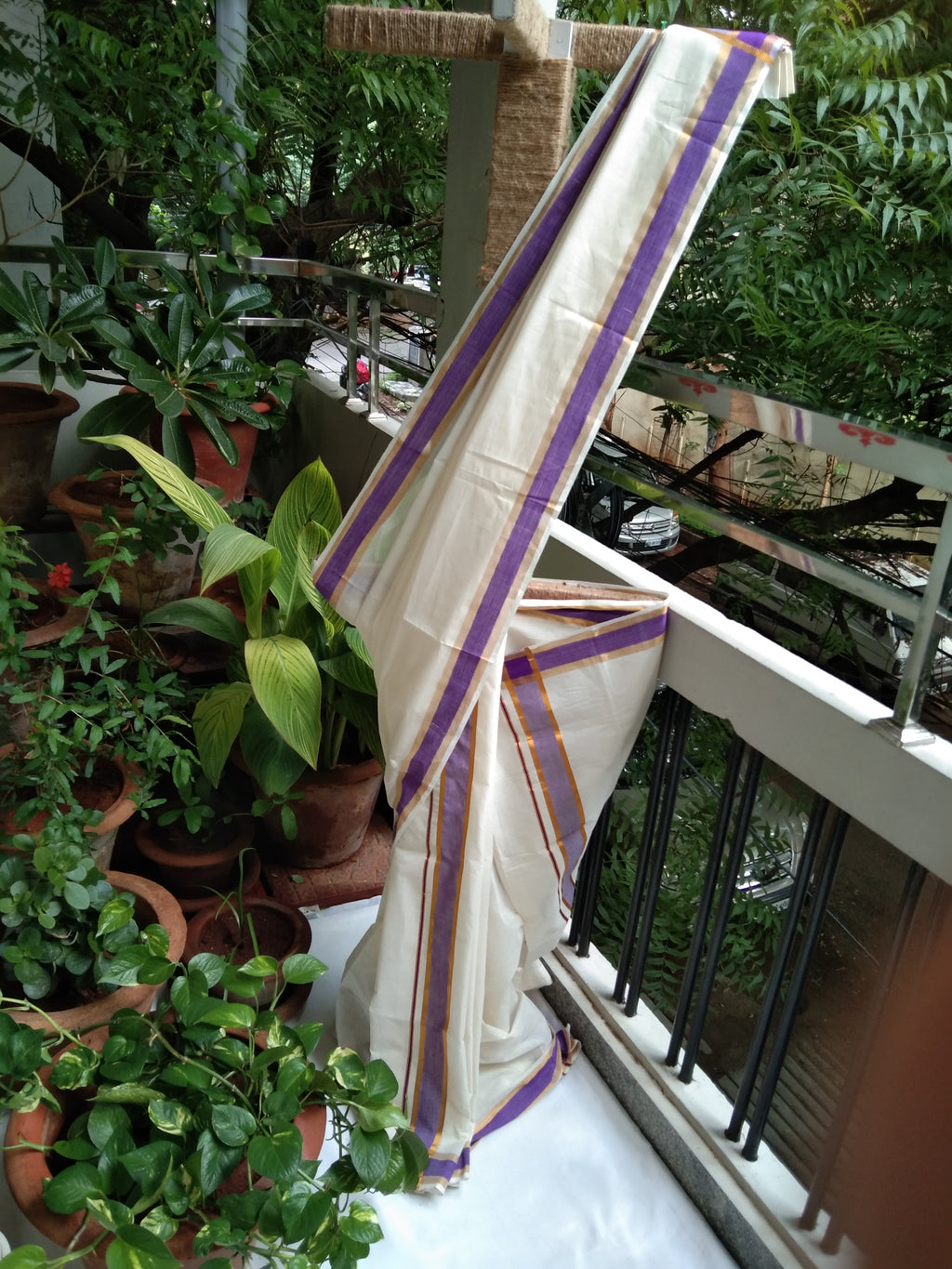 Mundu-Neriyathum in Cotton with Purple border
