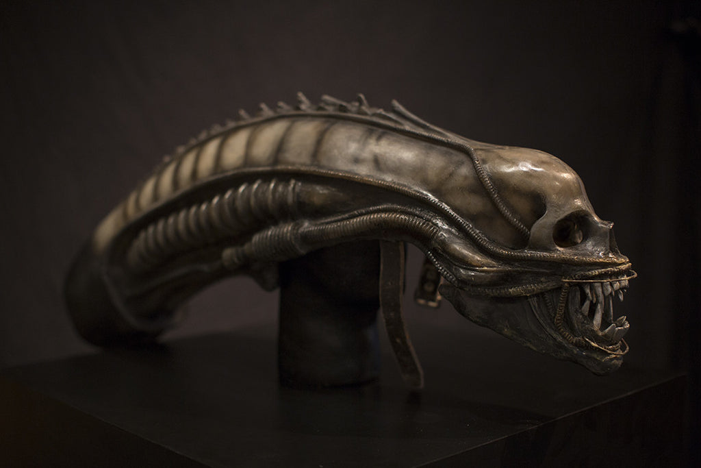 Screen-Used ALIEN Head (SOLD)