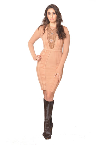 Just Me and Mesh Bodycon Dress