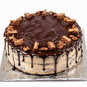 Chocolate Fudge Cake  TrueCakes
