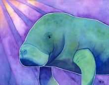 Load image into Gallery viewer, Manatee