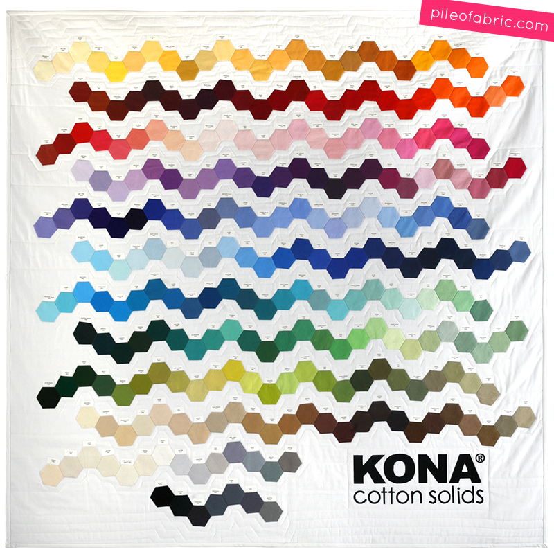 Kona® Cotton Genetics Quilt by Alyssa Lichner at Pile O' Fabric