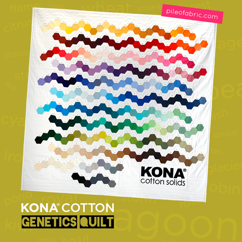 Kona® Cotton Genetic Quilts by Alyssa Lichner at Pile O' Fabric