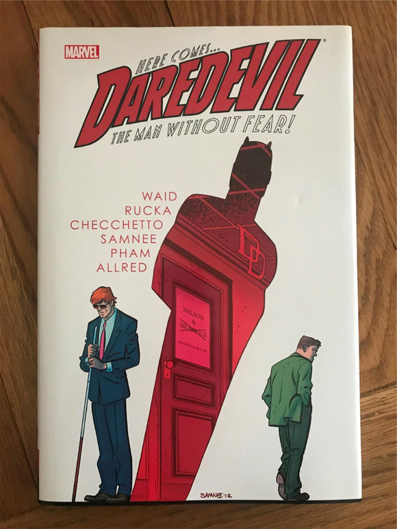 Daredevil The Man withour Fear Graphic Novel