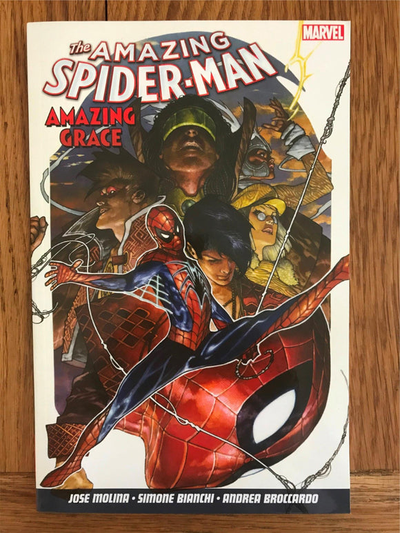 Amazing Spider Man Amazing Grace Graphic Novel