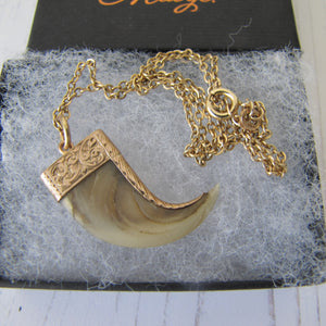 Victorian 15ct Gold Tiger Claw Pendant & Chain - MercyMadge