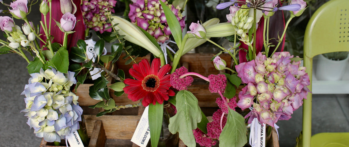 Auckland's leading CBD florist, same day delivery