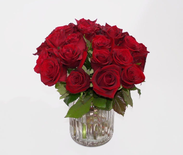 ( VALENTINES BEST BUY)  24 RED ROSES IN A VASE