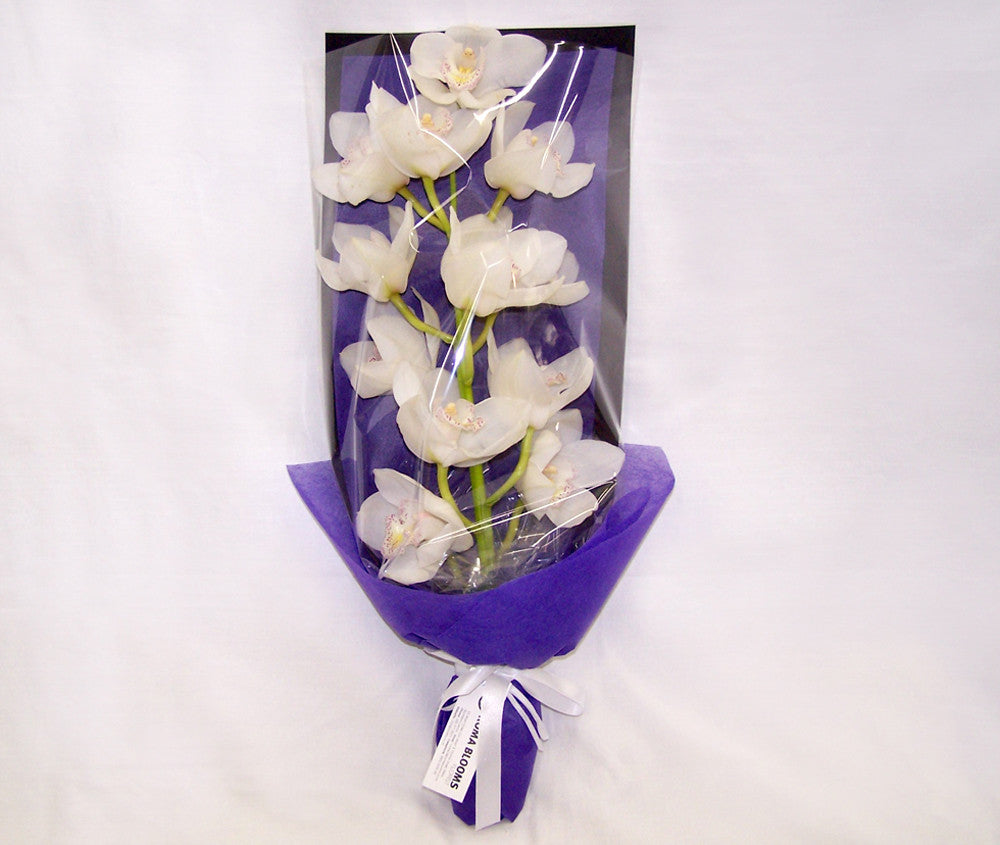 CELEBRATION ORCHID BOUQUET WHITE ONLY