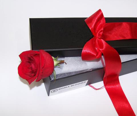 CLASSIC SINGLE RED ROSE BOXED