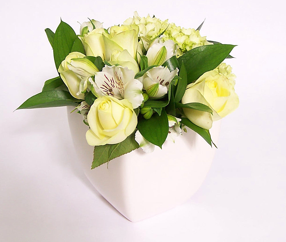 White and pale yellow coloured flowers.  - One ceramic pot.