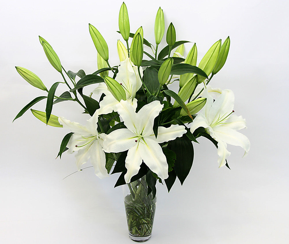 Classic white lilies, accentuated with lush greenery and conveniently presented in their own elegant vase.