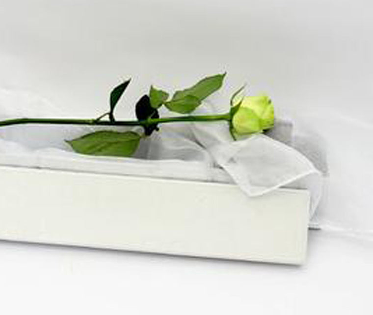SINGLE WHITE ROSE BOXED