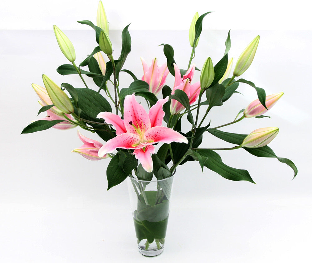 Pink lilies.  - One vase.
