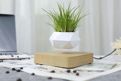 Levitating Air Bonsai Planter - Blumellon