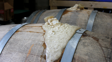 MIXED FERMENTATION