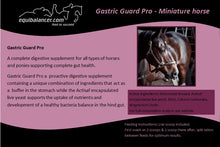 Load image into Gallery viewer, Gastric Guard Pro Mini