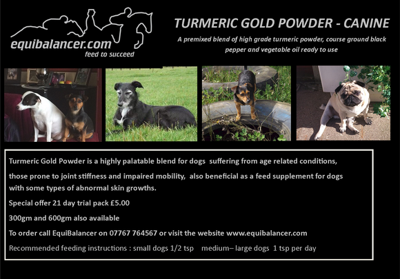Small Animal Turmeric Gold Powder