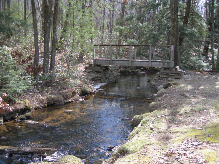 Chuck Keiper Trail: Cranberry Swamp Loop