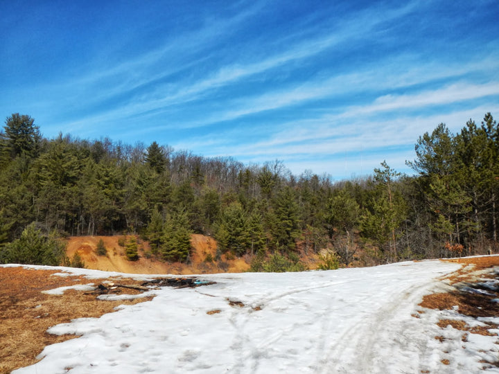 An Early Spring Walk in the Scotia Barrens