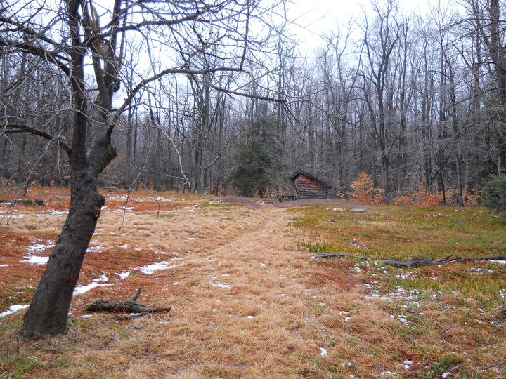 John P. Saylor Trail: Last Hike of the Year