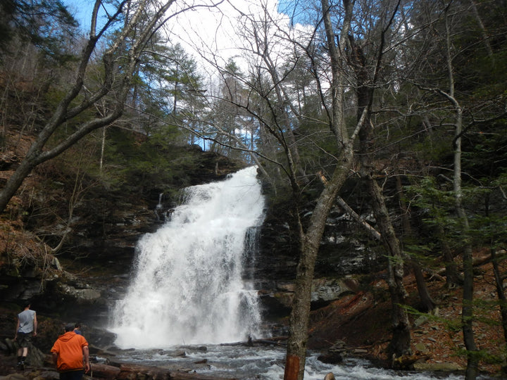 A Group Outing to Ricketts Glen State Park