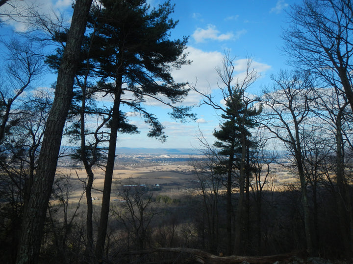 Musser Gap: Revisiting Lion's Valley Vista