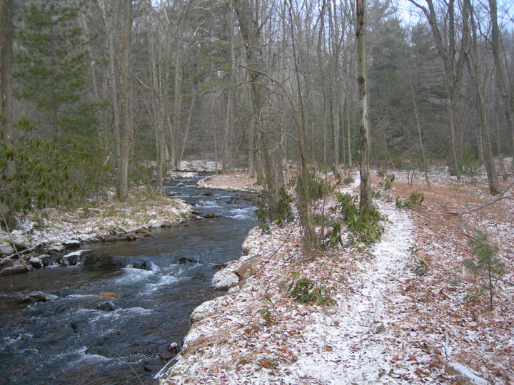 Trails of the Hook Natural Area