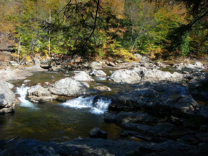 Loyalsock Trail: Hiking to World's End