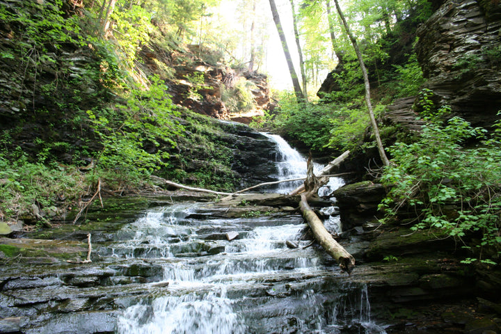 Hiking the Falls Trail at Ricketts Glen State Park