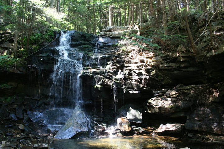 Loyalsock Trail: A Day Hike to the Haystacks