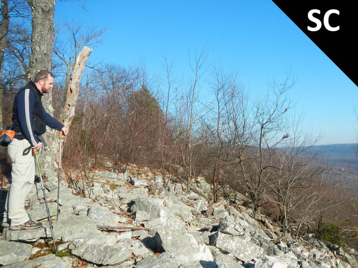Mid State Trail - State College: Circuit Hike on the MST and Little Shingletown Road