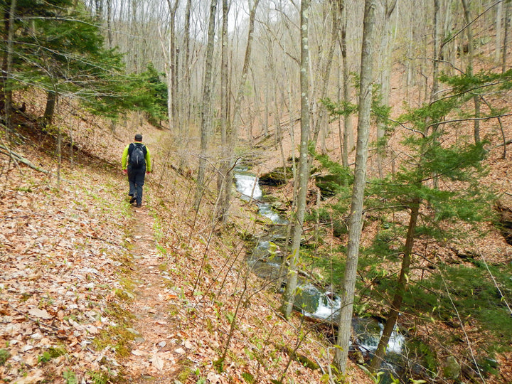 Golden Eagle Trail: An Early May Hike