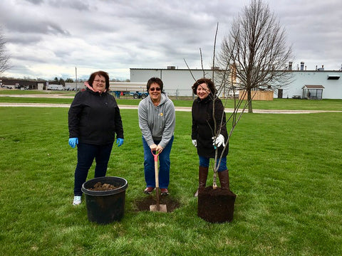 planting trees for earthy day