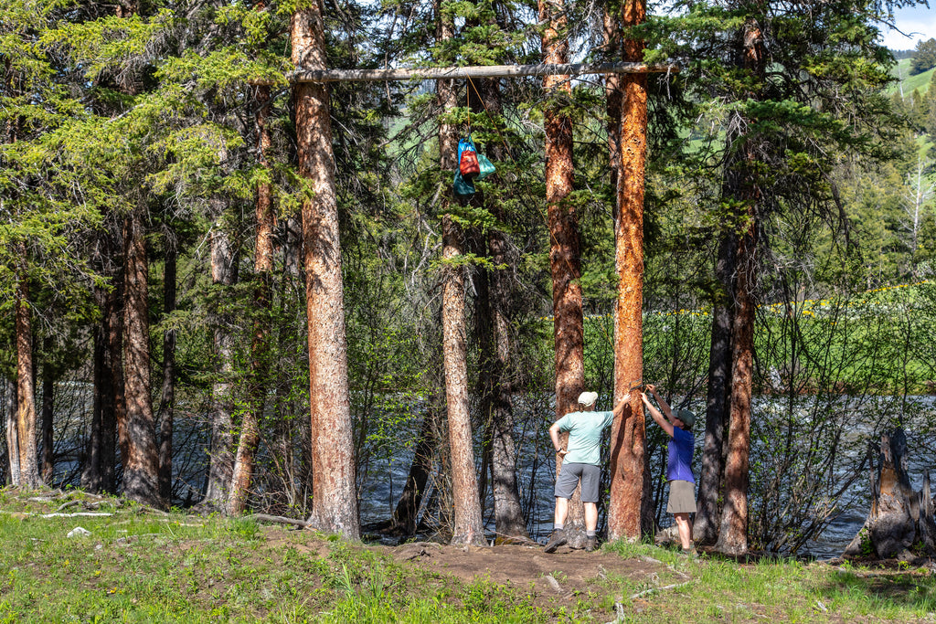 hanging food in the backcountry